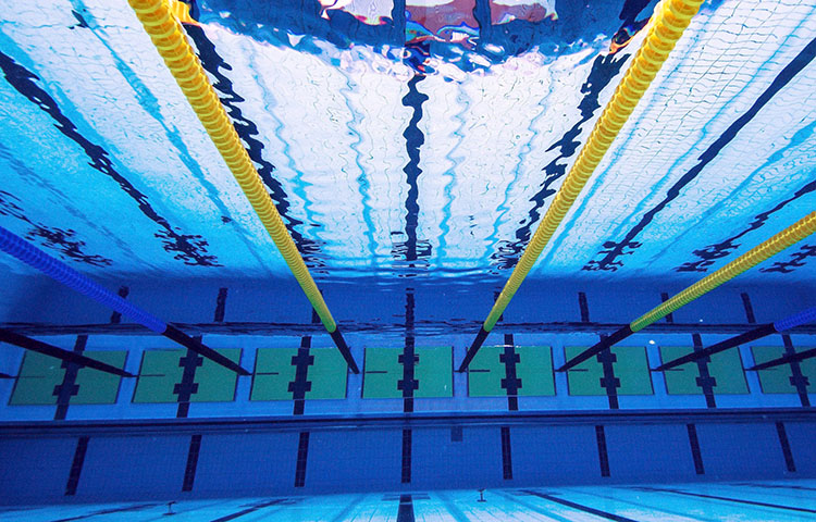 Cu l es el tama o de una piscina ol mpica sooluciona for Diseno grafico de piscina olimpica