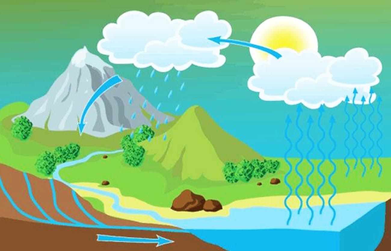 Diferencias Entre El Ciclo Del Agua Y El Ciclo Hidrológico Sooluciona