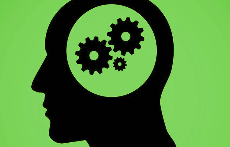 Diferencias entre hemisferios derecho e izquierdo del cerebro