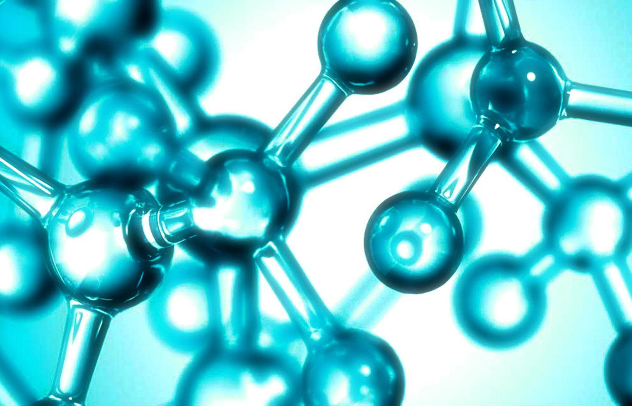 Diferencias entre biología celular y biología molecular – Sooluciona