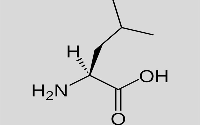 Diferencias entre isoleucina y leucina
