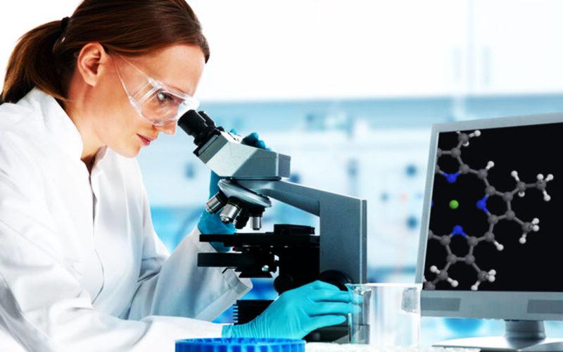 Diferencias entre transaminación y aminación reductiva